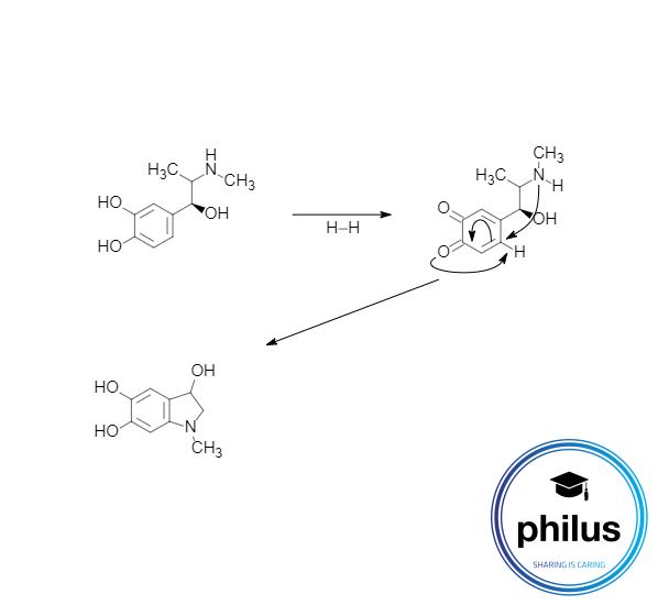 Adrenochrom-Reaktion Teil 1