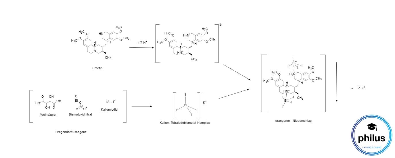 Emetin-Nachweis mit Dragendorff-Reagenz