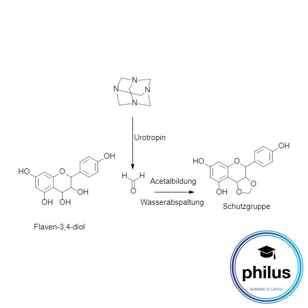 Entstörung von Leukoanthocyanidinenmit Formaldehyd als Acetalschutzgruppe