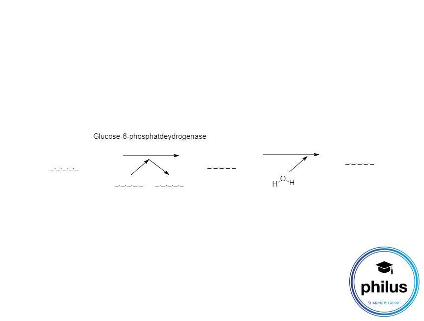 Glucose-6-phosphatdeydrogenase-Reaktion zur Bestimmung von Glucose (unvollständig)