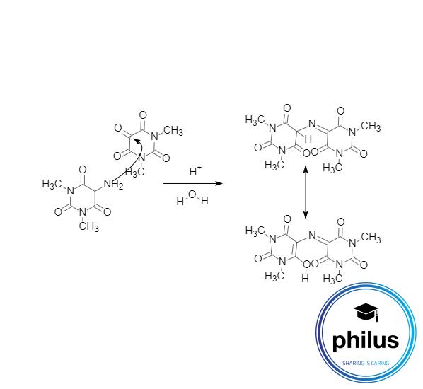 Theophyllin-Nachweisdurch Murexid-Reaktion Teil 2, Kondensation zu Purpursäure